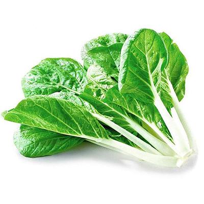 黑叶小白菜